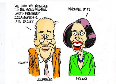 Image result for schumer cartoons