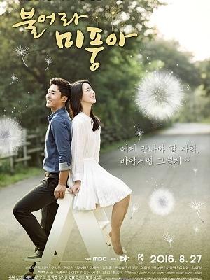 Xem Phim Ngọn Gió Đời Tôi 2016