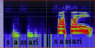 dinamica della voce e analisi delle componenti armoniche, live on stage
