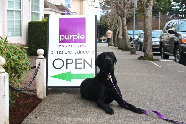 Purple Essentials open at 663 Beach Road - Come Visit