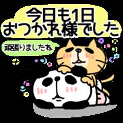 Honorific sticker of a cat and the panda