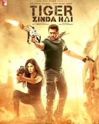 Tiger Zinda Hai Movie Download in HD
