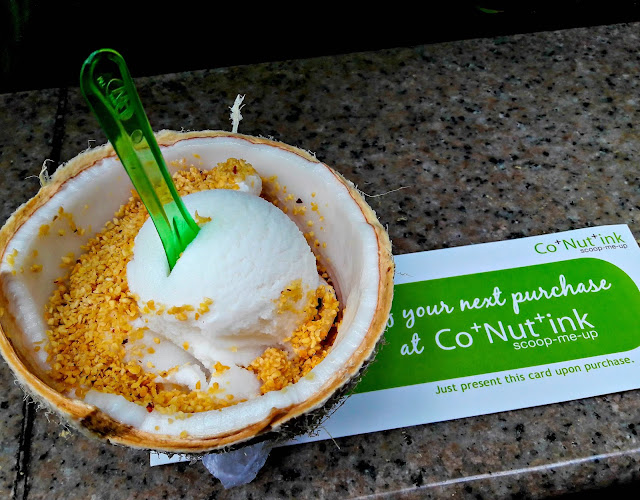 Coconut Ice Cream from CoNutInk