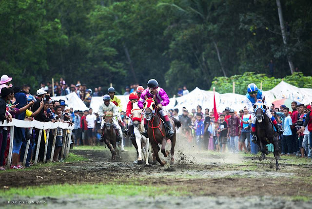 Pacuan Kuda di Ambalresmi; Lima Penonton Diseruduk Kuda