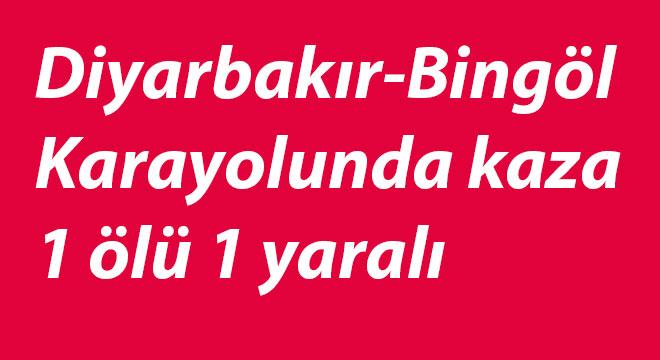 Diyarbakır-Bingöl Karayolunda kaza: 1 ölü 1 yaralı
