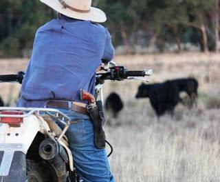 Arma de fogo para produtores rurais