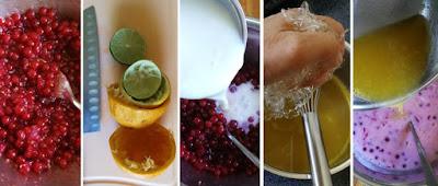 Zubereitung Buttermilch-Johannisbeer-Dessert