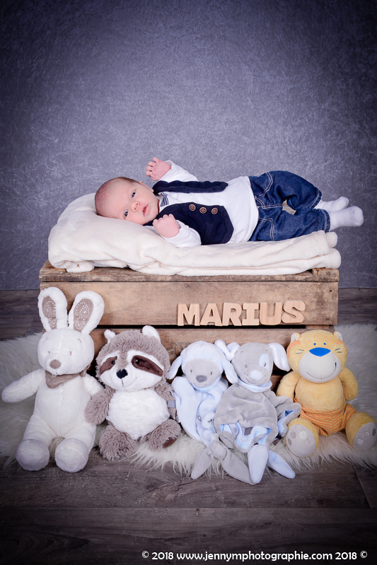 photographe bébé naissance maternité vendée 85