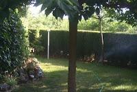 chalet en venta masia gaeta borriol jardin5