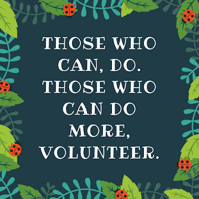 those who can do those who can do more volunteer appreciation
