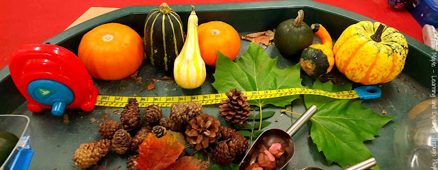 Autumn Tuff Tray. Autumn Ideas for children.