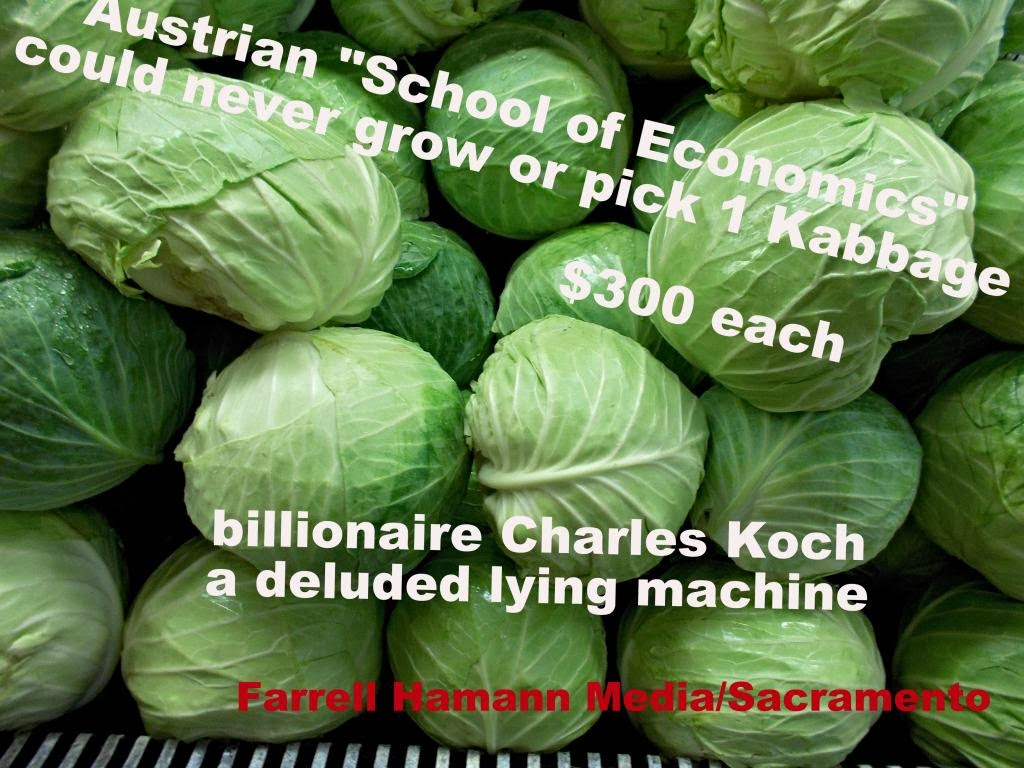 Crime By Farrell Hamann Boycott Koch Brothers Products