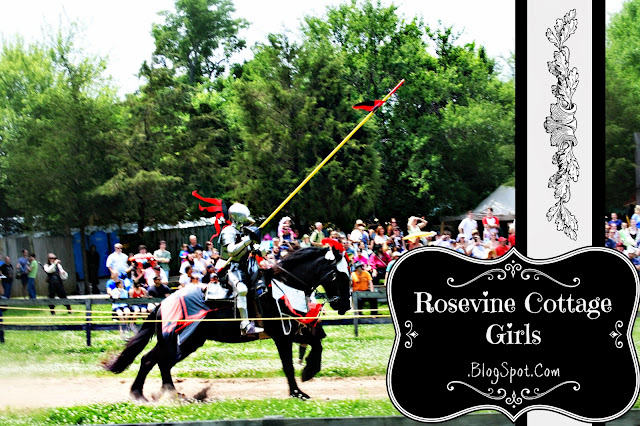 Tennessee Renaissance Festival - Knight on a horse in jousting tournament