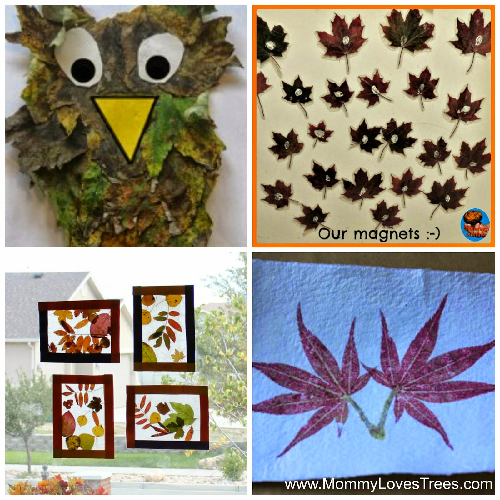 Nature walk 20 art projects using fall leaves giveaway