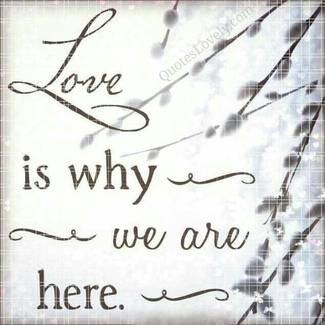 Love is why you're here