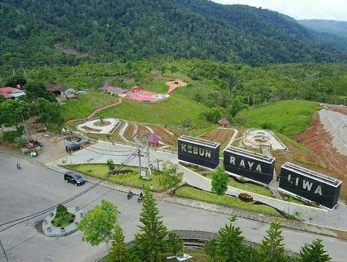 Kebun Raya Liwa Lampung Barat