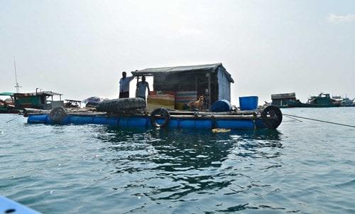 Đảo Hòn Chuối trước ngày chuyển gió -7