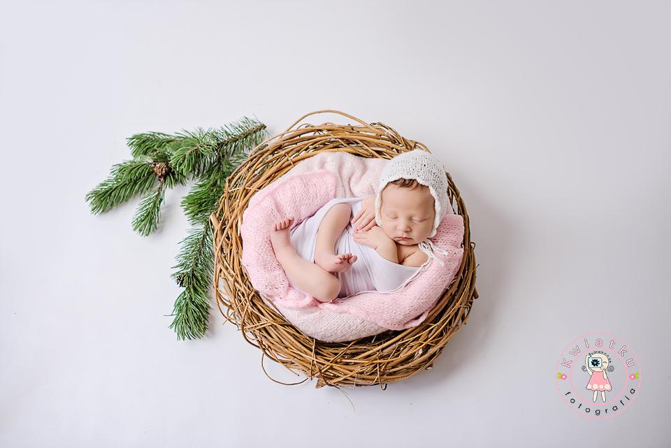 Z małym opóźnieniem i jej sesja noworodkowa znajduje swoje miejsce na blogu.
