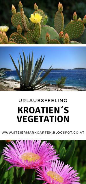 Urlaubsfeeling-Kroatien-Vegetation-Pin-Steiermarkgarten