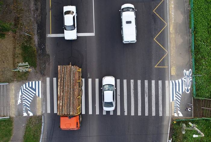 Pedestrian crossing in the form of a zebra. Krasnoyarsk, Russia, August 30. The author: Ilya Naymushin