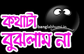 Kothata Bujhlam Na Bengali Funny Comment Sticker