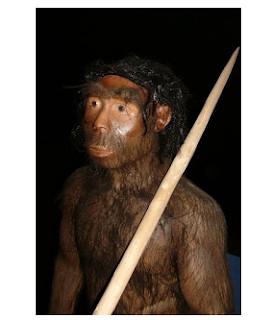 Pengertian dan Ciri-ciri Sinanthropus Pekinensis Terlengkap