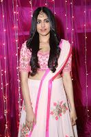 Adaa Sharma in White Pink Saree at Zee Telugu Apsara Awards 2017 28.JPG