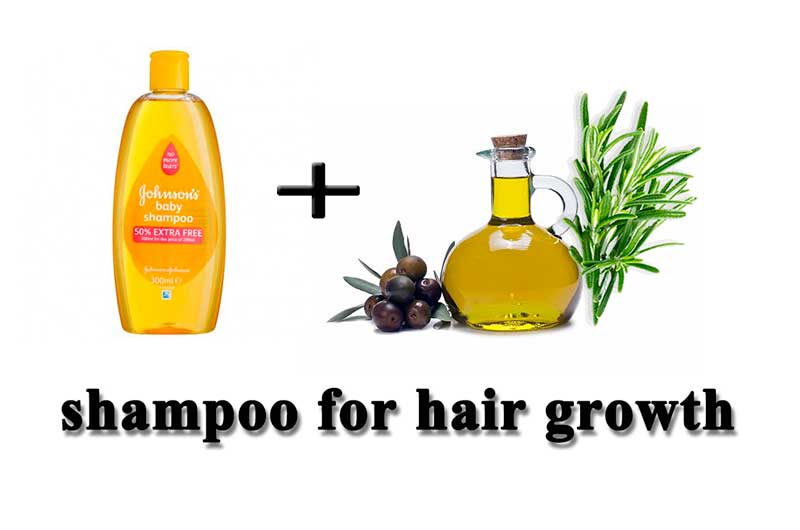 Shampoo Olive Oil And Rosemary For Hair Loss