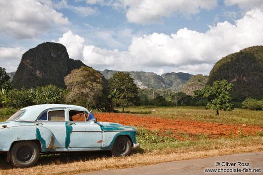 paysage CUBA avec voiture ancienne