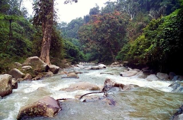 Sungai aliran air terjun tonduhan