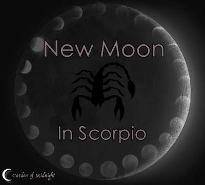 luna nuova scorpione fasi lunari
