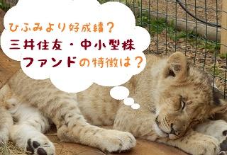 ひふみより好成績?『三井住友・中小型株ファンド』の特徴は?