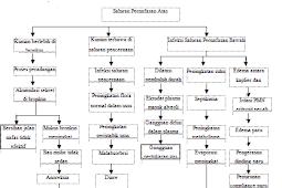 Patofisiologi serta Pathway Pneumonia