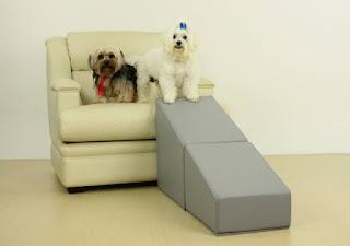 rampas com degrau de entrada para cães