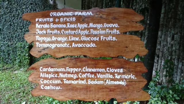 Cardamom County Resort, Thekkady