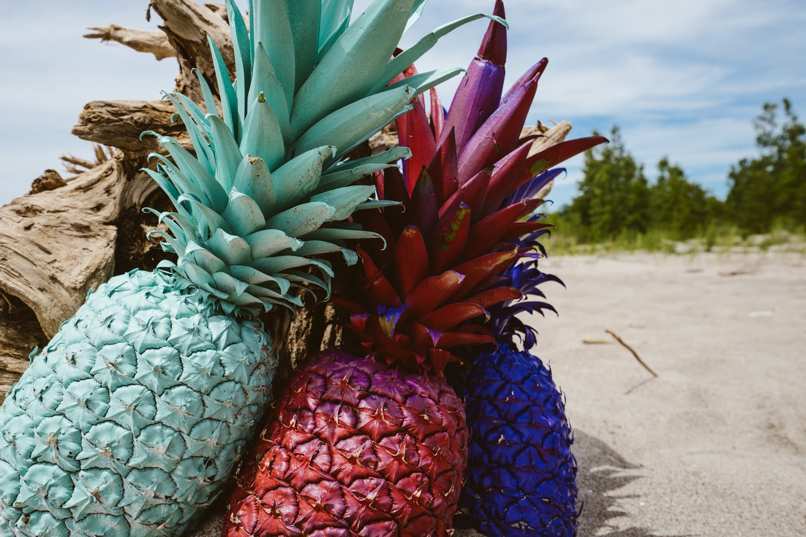 ananás azul e rosa blue and pink pineapples