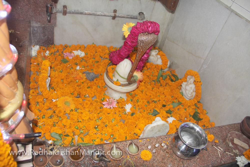 krishna hindu goddess