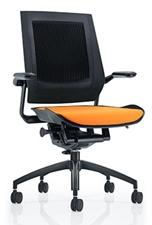 Eurotech Bodyflex Chair