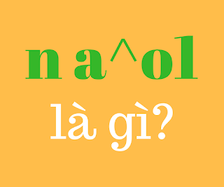 n a^o1 là gì