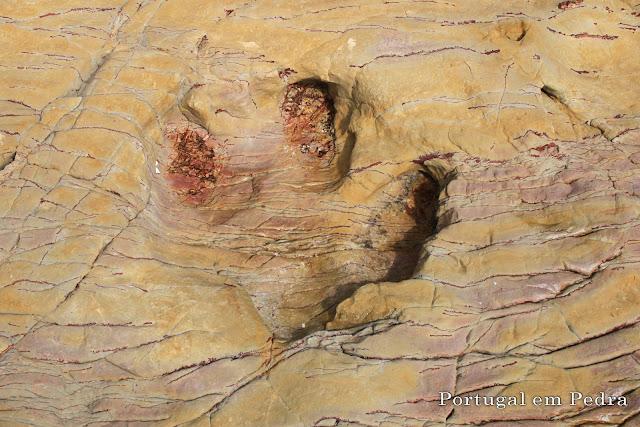 Pegada dinossauro iguanodonte praia Santa algarve