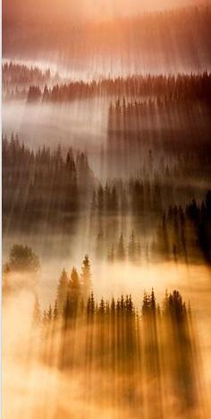 Hoje  no blog compartilho algumas imagens lindas e incríveis que achei no Pinterest como essa o que você achou não é incrível?