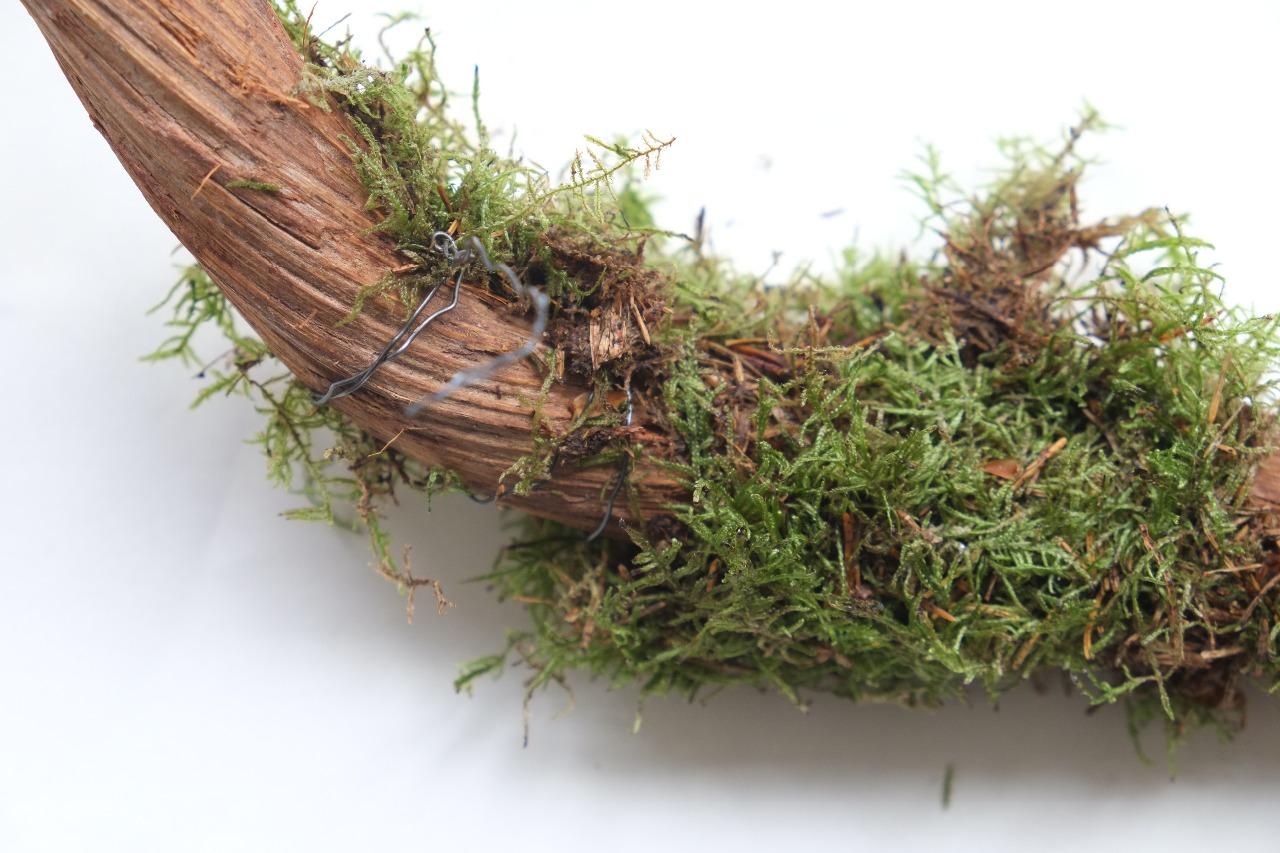Diy: Knip met de kniptang het ijzer tot de gewenste maat van het mos.