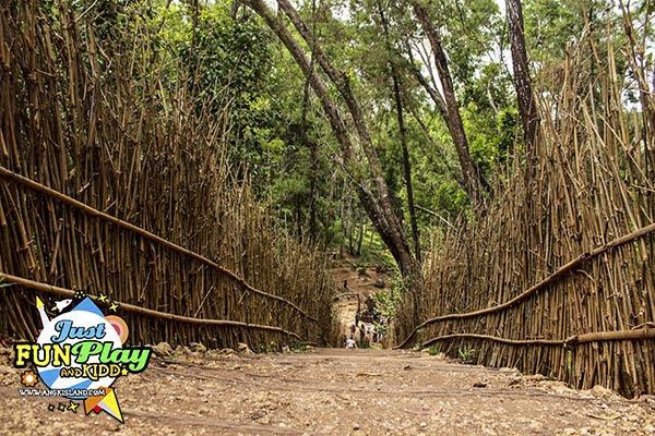 jepang bamboo