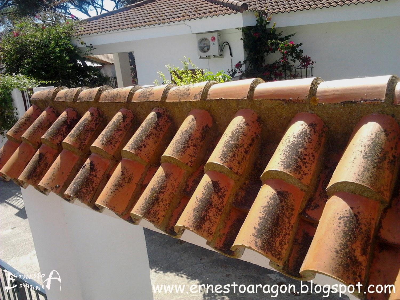 Ernesto arag n pintura para el hogar tejados y z calos - Clases de tejas para tejados ...