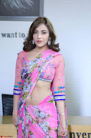 Actress Angela Krislinzki in Pink Saree Blouse Exclusive Pics March 2017 ~  083.JPG