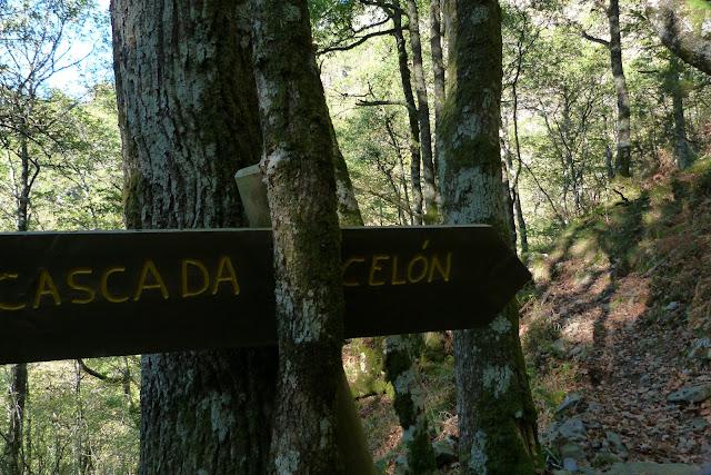 Cascada Celón - Ruta del Silencio