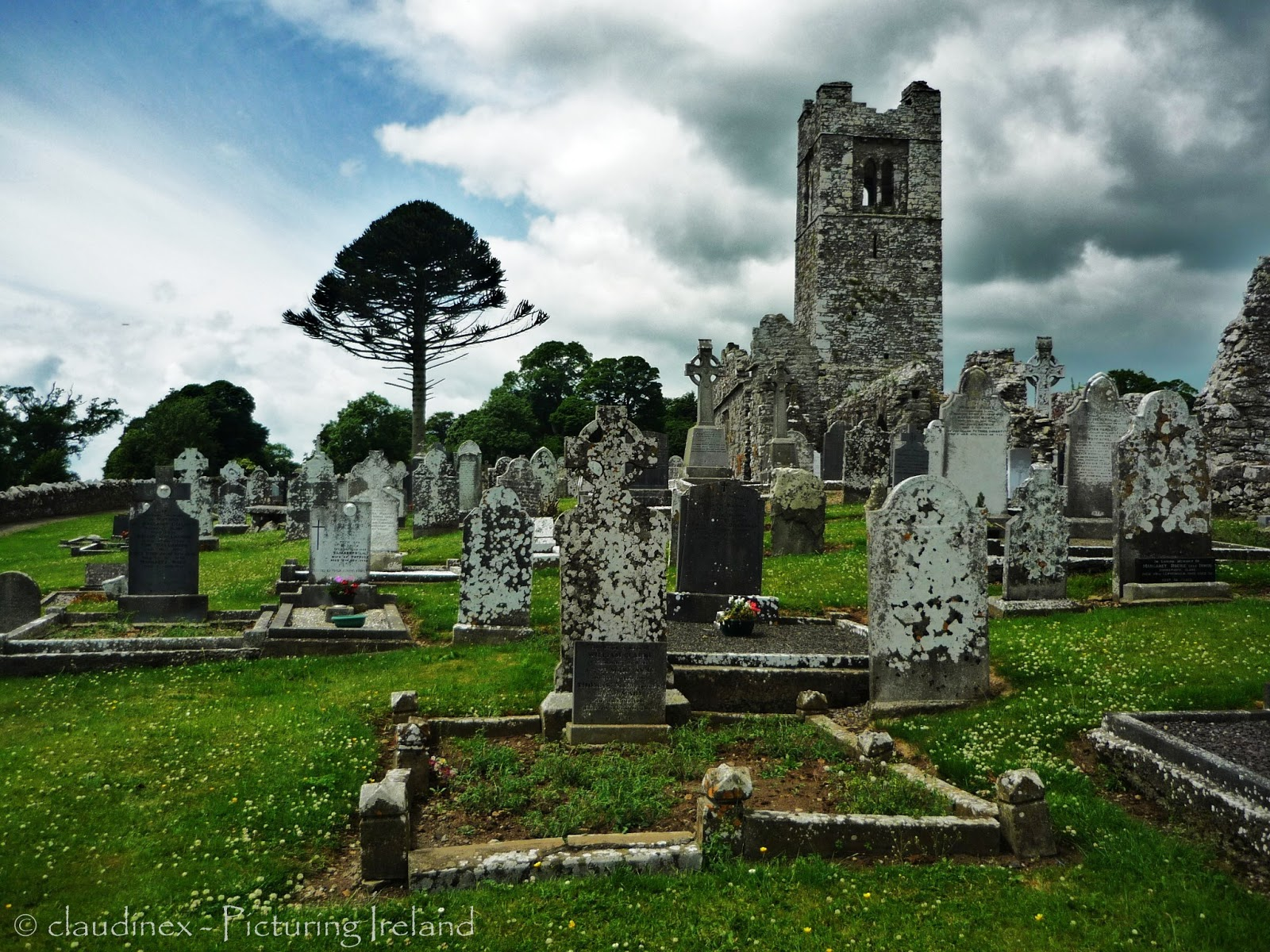 Picturing Ireland : Exploring Ireland's Ancient East: The ...