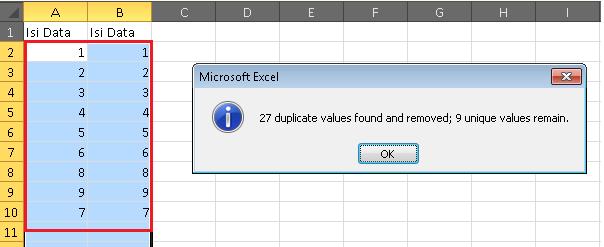 Cara Menghapus Data Yang Sama di Excel 2010