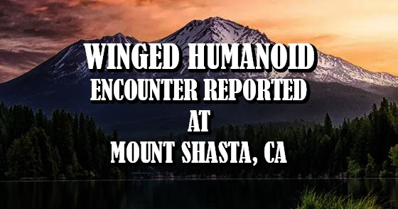 Winged Humanoid Encounter Reported at Mount Shasta, CA