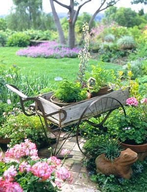 Yard decor ideas, yard decorating ideas, front yard landscaping ideas, back yard ideas, back yard decorating ideas, yard decoration ideas, landscaping ideas for front yard, front yard landscaping ideas pictures, landscape ideas for front yard, front yard landscape ideas, yard decorating ideas on a budget